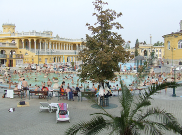 Children in Szechenyi Baths Budapest