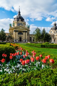 April Spring Flowers in Szechenyi Baths Budapest